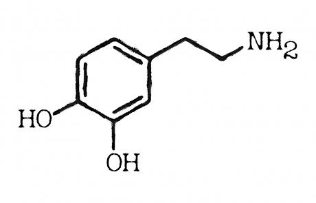 dopamine-3304357_1920