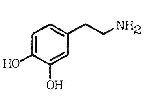 Copia de Cérebro por dentro – Neurotransmissores Dopamina